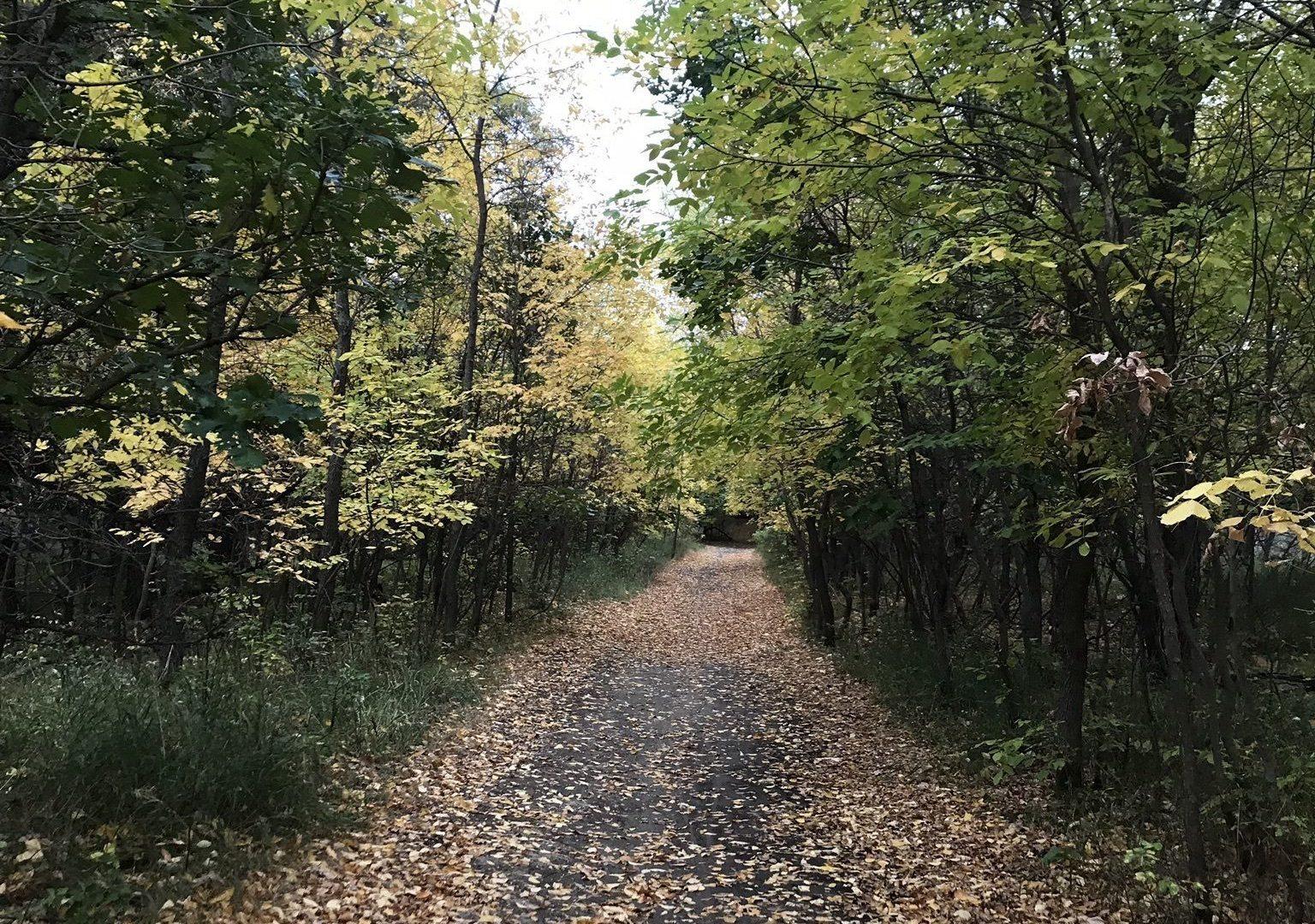 Minot Trails